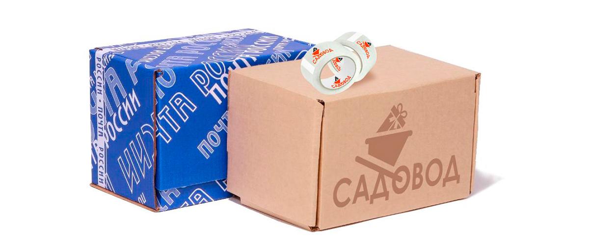 Варианты доставки товара в интернет магазине Садовод