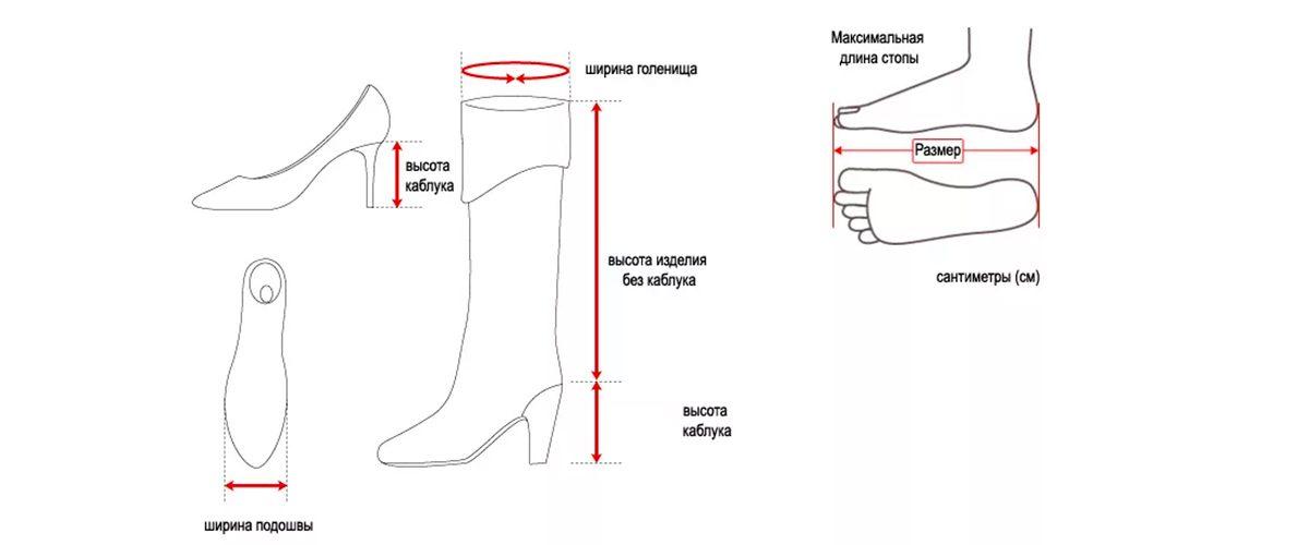 Как измерить женскую обувь